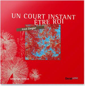 Couv-Un-Court-Instant-Etre-Roi-Envolume